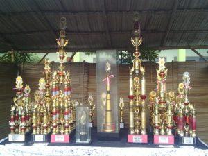 Piala HRCD XXIX